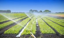 Արարատի մարզերում կիրականացվի «Ոռոգվող գյուղատնտեսության զարգացում» ծրագիրը