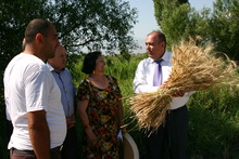 Հացահատիկի առատ բերք